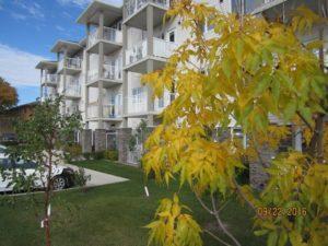 Viellir chez soi: Gérer une coopérative d'habitation pour aînés