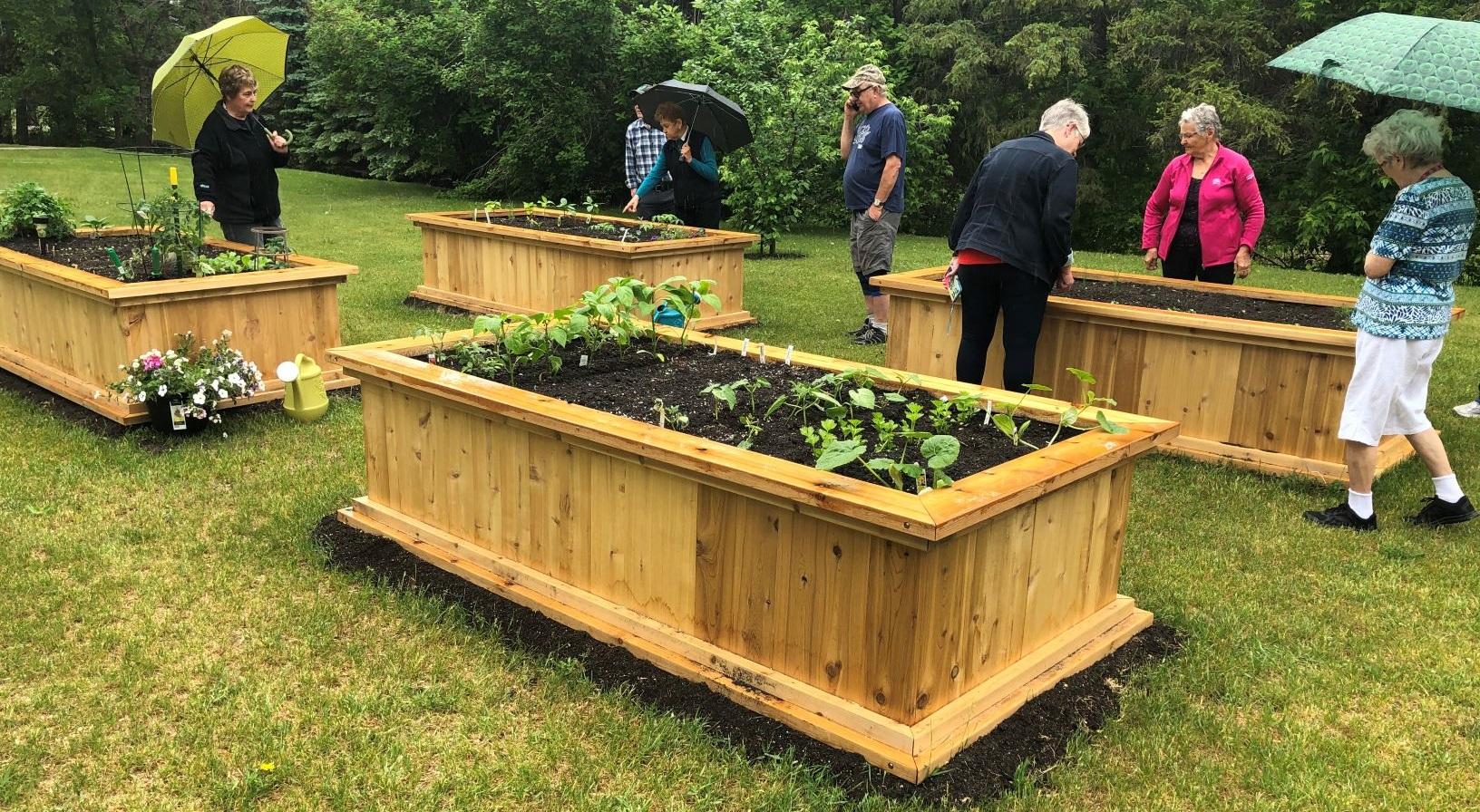 Le jardin communautaire d'une coopérative devient un lieu de rassemblement pour la communauté