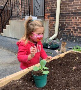 Une petite fille fait du jardinage